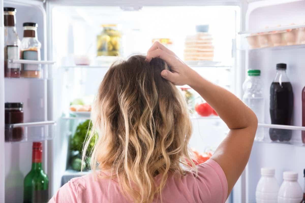 變頻冰箱與傳統冰箱價格差多少?